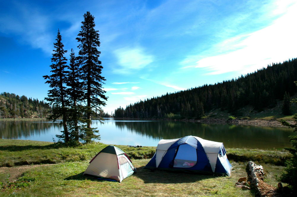 Best 12 Person Tent: Three Great Picks